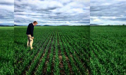 Glengower farmer to share success with grassland tour
