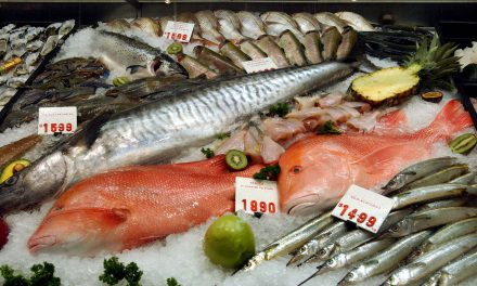 Free trade spawns boom in Aussie seafood exports