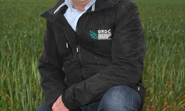 New sowing guide to inform Victorian growers' variety decisions